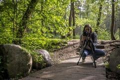 Skoncentrowany kobieta fotograf bierze obrazki las i fotografia royalty free