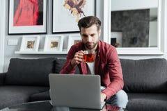 Skoncentrowany młody brodaty mężczyzna używa laptop fotografia royalty free