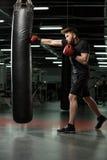 Skoncentrowany młody silny sporta mężczyzna bokser robi ćwiczeniom obrazy royalty free