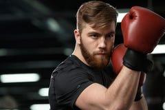 Skoncentrowany przystojny młody silny sporta mężczyzna fotografia royalty free