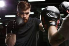 Skoncentrowany przystojny młody silny sporta mężczyzna bokser fotografia stock