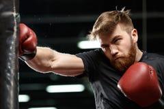 Skoncentrowany przystojny młody silny sporta mężczyzna bokser fotografia royalty free