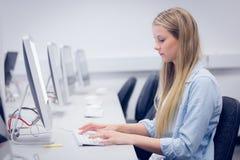 Skoncentrowany studencki działanie na komputerze obraz royalty free