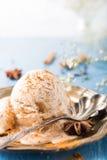 Skopa av hemlagad glass med kanel Royaltyfri Foto