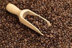 Skopa i en bakgrund för kaffebönor Royaltyfri Foto