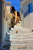 Skopelos Greece royalty free stock photos