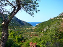 Skopelos-outlook on the Glisteri beach Royalty Free Stock Photo