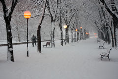 Skopje city park in the snow Stock Photography