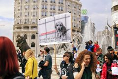 Civilians protesting the violence towards to street dogs,  solid. Skopje, Macedonia - April 9, 2017: Civilians protesting the violence towards to street dogs Stock Images