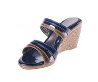 Skor damtoalett skor på bakgrund. royaltyfria foton