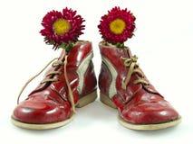 Skor för barn` s med blommor royaltyfria bilder
