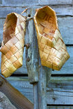 skor för björkskäll Fotografering för Bildbyråer