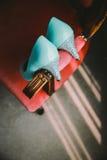 Skor för Tiffany blåttbröllop Fotografering för Bildbyråer