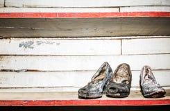 Skor för Women's' tappningklänning royaltyfri bild