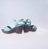 Skor isolerad skokvinna Skor isolerad skokvinna Arkivbild