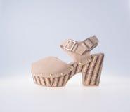 Skor isolerad skokvinna Skor isolerad skokvinna Royaltyfri Fotografi