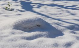 Skorpa av snö arkivbilder