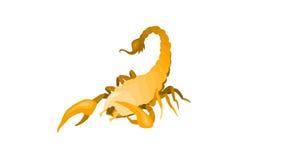 Skorpion Royaltyfri Bild