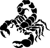 Skorpion Stockfoto
