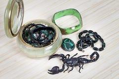 Skorpion z kobiety przybraniem Obraz Stock