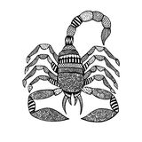Skorpion in zentangle Art auf weißem Hintergrund Stockfoto