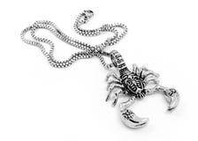 Skorpionhängen och halsbandet - rostfritt stål Arkivfoton