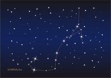 Skorpionkonstellation vektor abbildung