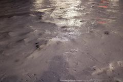 Skorupa błyszczenie lód z lekkimi odbiciami zakrywa zimnego białego śnieg Zdjęcie Stock