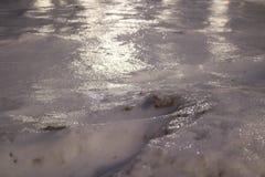 Skorupa błyszczenie lód z lekkimi odbiciami zakrywa zimnego białego śnieg Fotografia Royalty Free