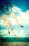 skorupa podmuchowy denny wiatr Fotografia Stock