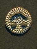 Skorupy plaża Obrazy Royalty Free