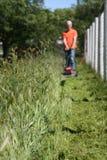 skosić trawę Obrazy Stock