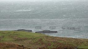 Skotsk fisklantgård för laxen som växer i vatten för öppet hav på ön av Skye lager videofilmer