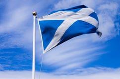Skotsk flagga royaltyfri fotografi