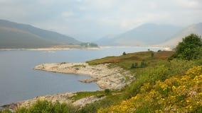 Skotsk natur Royaltyfria Foton