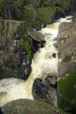 skotsk vattenfall Arkivbild