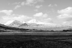 skotsk vinter för liggande royaltyfri foto