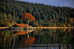 Skotska Crannog Arkivfoton
