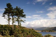 skotska högland arkivfoto