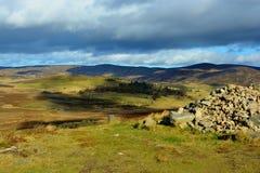 skotska högland Royaltyfri Fotografi