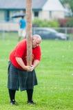Skotska höglandlekar Arkivbild