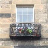 Skotskt fönster Royaltyfri Foto