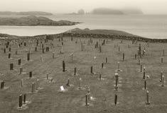 Skotskt landskap med kyrkogården och kustlinjen scotland UK Arkivfoto