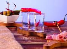 Skott av vodka Royaltyfri Fotografi