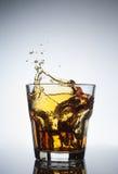 skott av whisky med färgstänk på vit Royaltyfria Bilder
