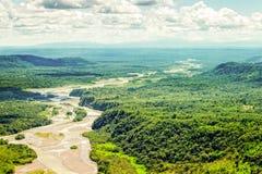 Skott för antenn för Pastaza flodhandfat royaltyfri fotografi