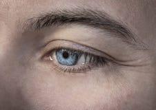 Skott för detalj för man för blått öga för makrobild mänskligt - Bilder arkivbild