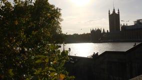 Skott för glidare för landskapultrarapid 2x av seagulls som flyger ovanför Thames River i bakgrunden av solilsken blick bak Westm stock video