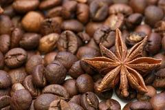 Skott för makro för stjärnaanis och för kaffebönor Royaltyfri Bild