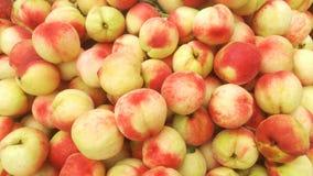 Skott för närbild för persika` s; den saftiga persikan är ny och billig Fotografering för Bildbyråer